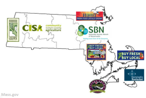 Filling the Gaps: Creating a Central Mass Buy LocalProgram